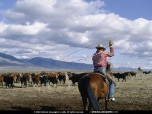 Cowboy Ike?