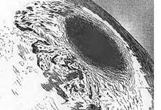 Harper's Weekly 1882 Symmes Hole Illustration