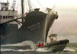 "Greenpeace Trying To Stop ""Research"" Ship"