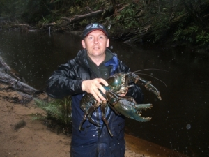 Tasmanian Giant Freshwater Crawfish
